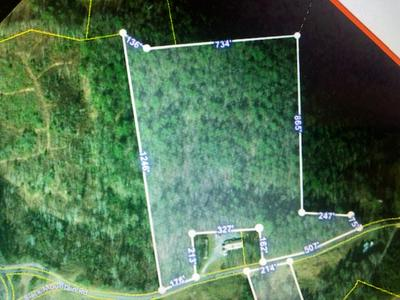 16 ACRES BLACK MOUNTAIN RD, Hartford, TN 37753 - Photo 2