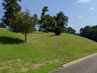 8012 MOUNTAIN RIDGE DR, Mooresburg, TN 37811 - Photo 1