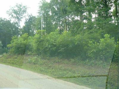LOT 16 ROSE HILL LANE, RUTLEDGE, TN 37861 - Photo 2