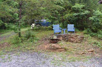 253 LAUDERBACK GAP TRL, Rogersville, TN 37857 - Photo 2
