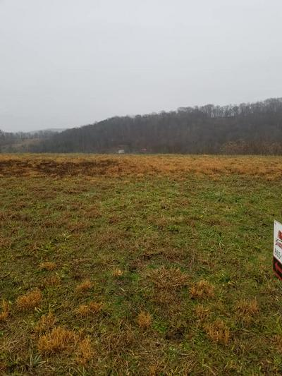 LOT 6 HOLSTON SHORES DR., Rutledge, TN 37861 - Photo 2