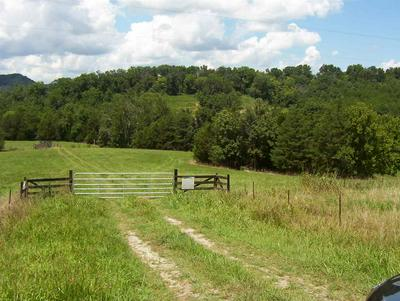 CLINE ROAD, Dandridge, TN 37725 - Photo 2