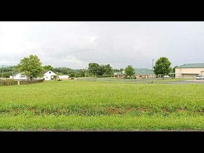 LOT 8 MORIE ROAD, Dandridge, TN 37725 - Photo 2