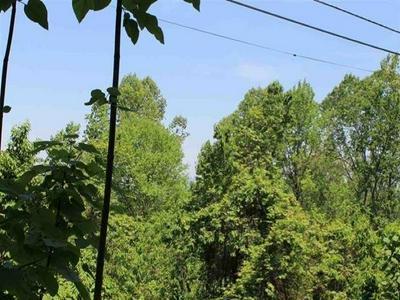 LOT 3 STANS ROAD, Gatlinburg, TN 37738 - Photo 1
