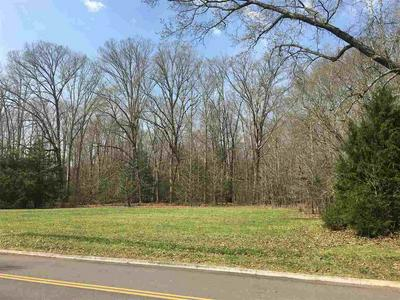 LOT 13 STOKLEY CT, Dandridge, TN 37725 - Photo 2