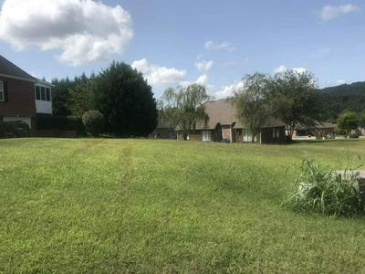 408 KENSINGTON DR, Morristown, TN 37814 - Photo 1