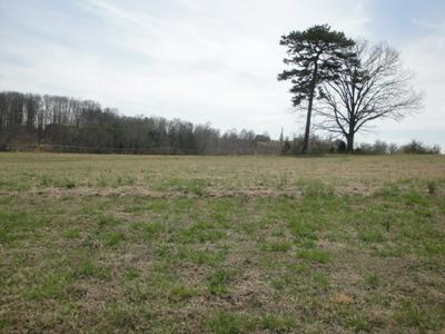 LOT 48 CHIPPEWA LANE, Rutledge, TN 37861 - Photo 1