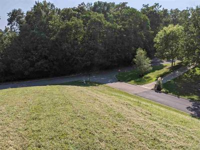 9022 PARADISE VIEW DR, Mooresburg, TN 37811 - Photo 1