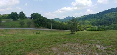 0 MOORE RD., Mooresburg, TN 37811 - Photo 2