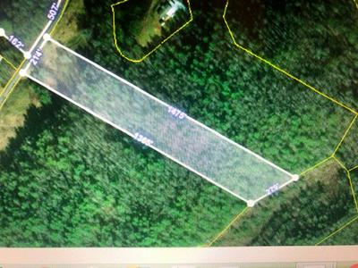 8 ACRES BLACK MOUNTAIN RD, Hartford, TN 37753 - Photo 2