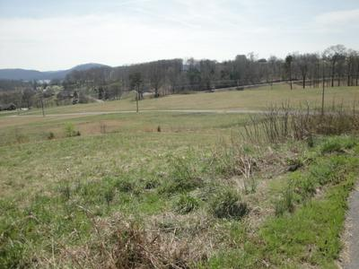 LOT 20 POCAHONTAS LANE, Rutledge, TN 37861 - Photo 1