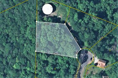 LOT 9 WALK IN THE TREES DR, New Market, TN 37820 - Photo 2