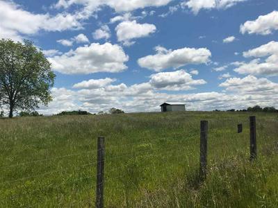 LOTS 2 & 3 WESTWOOD ROAD, Mohawk, TN 37810 - Photo 2