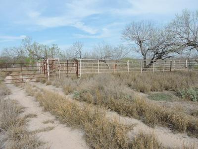 TX STATE HWY 16, Zapata, TX 78076 - Photo 1