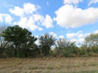 S U.S. HWY 83, ZAPATA, TX 78076 - Photo 2