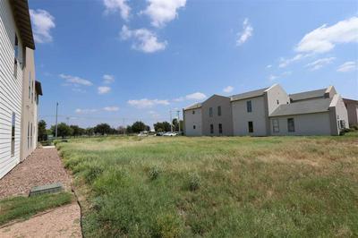 1503 DON CAMILO BLVD, Laredo, TX 78046 - Photo 2