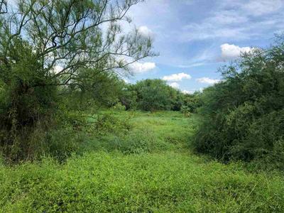 00 W WHITE TAIL LN, Encinal, TX 78019 - Photo 1