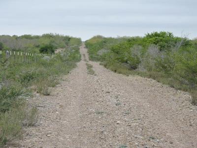 HWY 83 S ZAPATA HWY, Zapata, TX 78076 - Photo 1