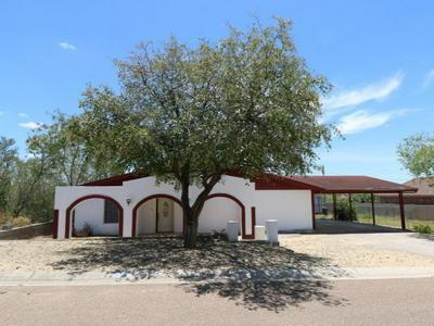 192 VISTA HERMOSA, Zapata, TX 78076 - Photo 1