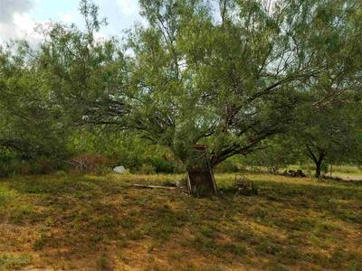 220 UVALDE ST, Encinal, TX 78019 - Photo 2