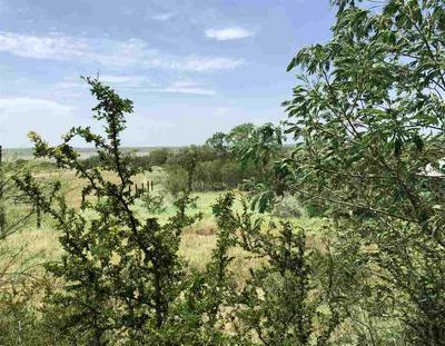1721 N SIESTA LN, Zapata, TX 78076 - Photo 1