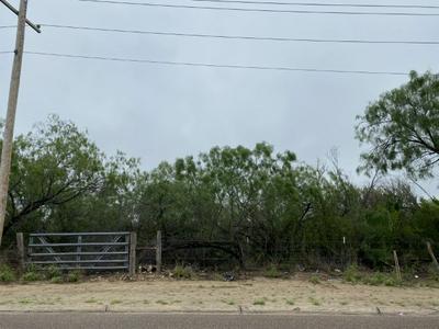 CARLA ST, Zapata, TX 78076 - Photo 2