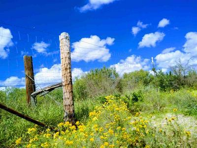 MANGANA-HEIN RD, LAREDO, TX 78046 - Photo 1