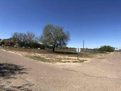113 ILLINOIS ST, ZAPATA, TX 78076 - Photo 1