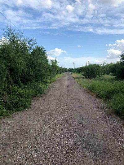 0 W WHITE TAIL LN, Encinal, TX 78019 - Photo 2