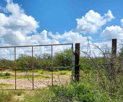 MANGANA-HEIN RD, LAREDO, TX 78046 - Photo 2