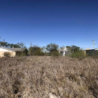 1808 JACKSON ST, ZAPATA, TX 78076 - Photo 2