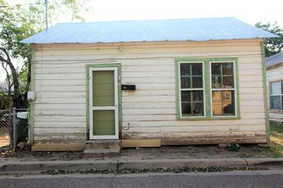313 SAN JORGE AVE, LAREDO, TX 78040 - Photo 2