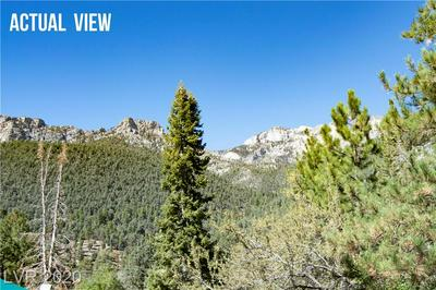 3952 SKI TRAIL CIR, Mount Charleston, NV 89124 - Photo 1
