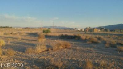 9780 VICKI ANN RD, Pahrump, NV 89048 - Photo 2