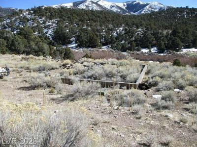 8950 MOUNT WILSON RANCH RD, PIOCHE, NV 89043 - Photo 1