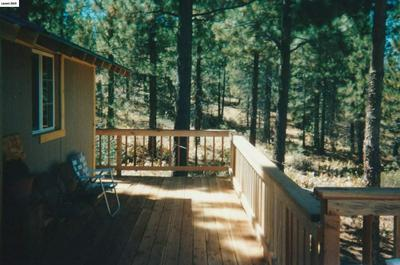 854 SUGARLOAF RD, Frenchman Lake, CA 96105 - Photo 2