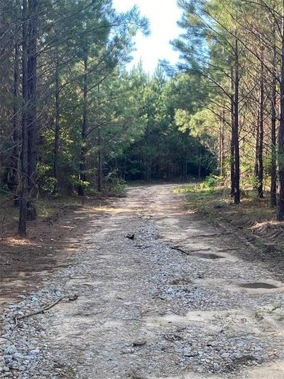 0 RED ROAD, TUSKEGEE, AL 36083 - Photo 2