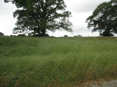 0000 SHARON/MOSS - GRANDVIEW LANE, Laurel, MS 39443 - Photo 1