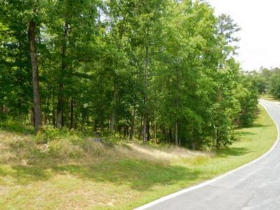 2141 OSPREY POYNTE, Greensboro, GA 30642 - Photo 2