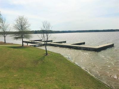 1041 LAKE POINTE S, Greensboro, GA 30642 - Photo 1