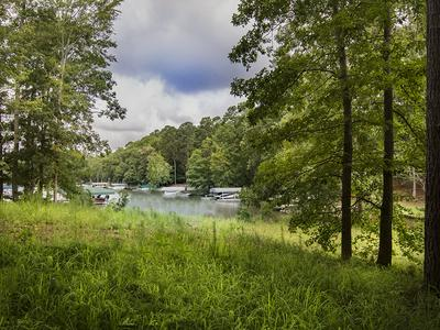 1591 PINE GROVE RD, Greensboro, GA 30642 - Photo 1