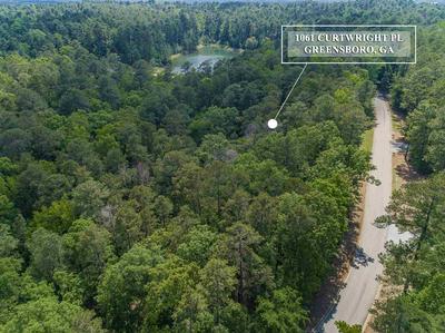 1061 CURTRIGHT PL, Greensboro, GA 30642 - Photo 1