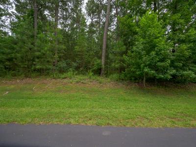 1000 SCULL SHOALS DR, Greensboro, GA 30642 - Photo 1