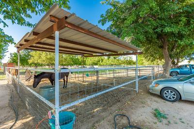 3820 CALLE DE LAS MARGARITAS, Las Cruces, NM 88005 - Photo 2