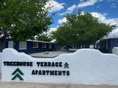 2125 GARRISON RD # 2141, Las Cruces, NM 88001 - Photo 1