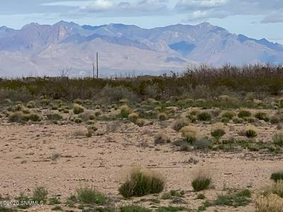 247 SHIRLEY LN, Chaparral, NM 88081 - Photo 2