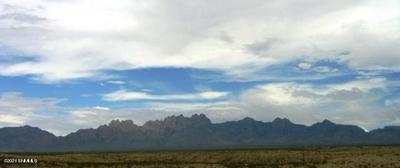 4277 TAWNY PARK ROAD, Las Cruces, NM 88011 - Photo 1