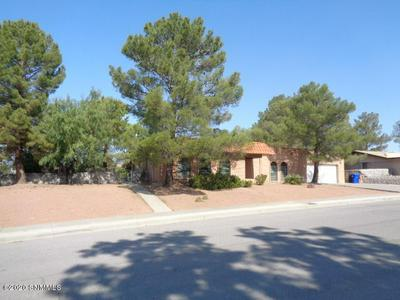3205 DYER ST, Las Cruces, NM 88011 - Photo 2