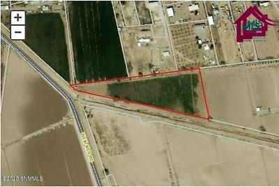 000 WESTSIDE ROAD, Anthony, NM 88021 - Photo 2