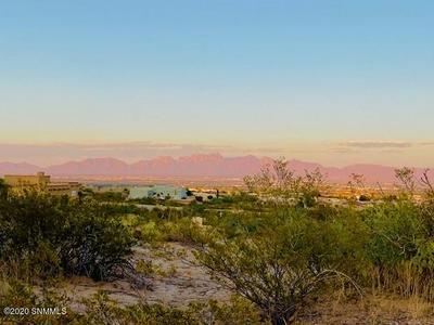1308 ESTANCIA REAL PL, Las Cruces, NM 88007 - Photo 2